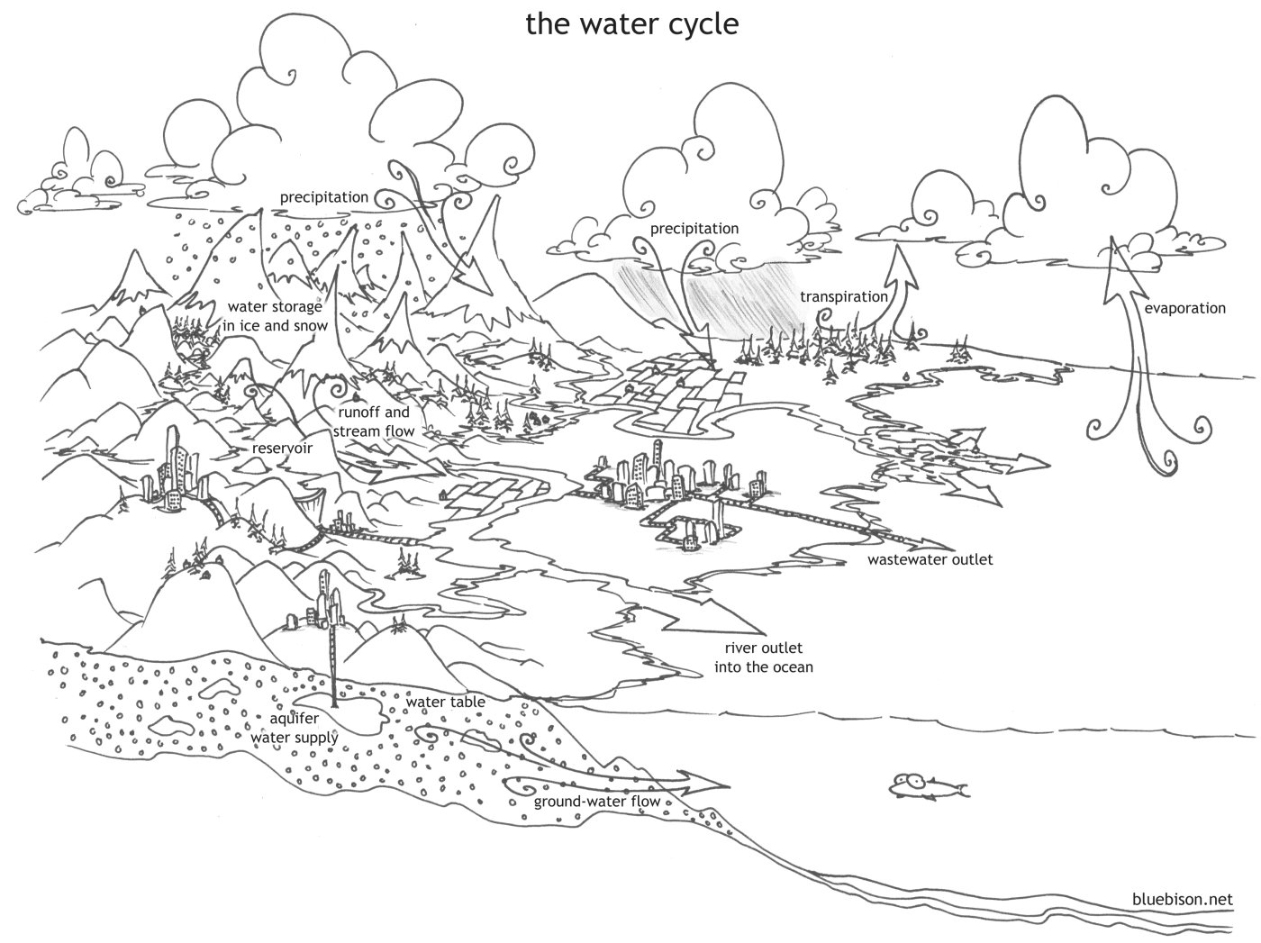 coloring pages the water cycle bluebisonnet