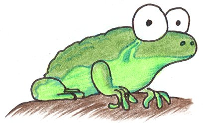 a frog - Picture Of A Frog