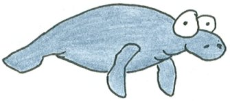 cartoon drawing of a manatee swimming