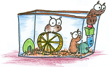 illustration of cartoon hamsters sneaking out