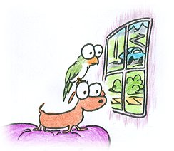 cartoon bird and dog looking out a window in need of a petsitter