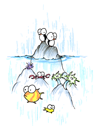 drawing of penguins, anemone, crab, and fish in the ocean