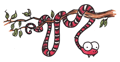 illustration of a king snake
