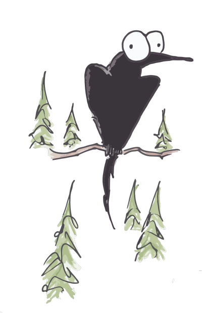 illustration of a raven in some pine trees